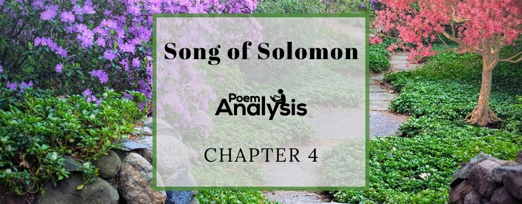 Song of Solomon Chapter 4