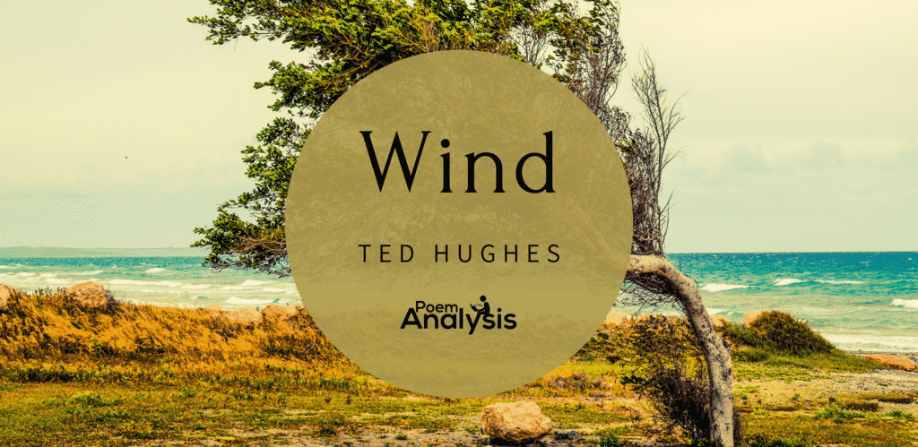 Wind by Ted Hughes