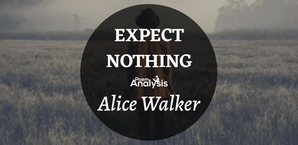 Expect Nothing by Alice Walker