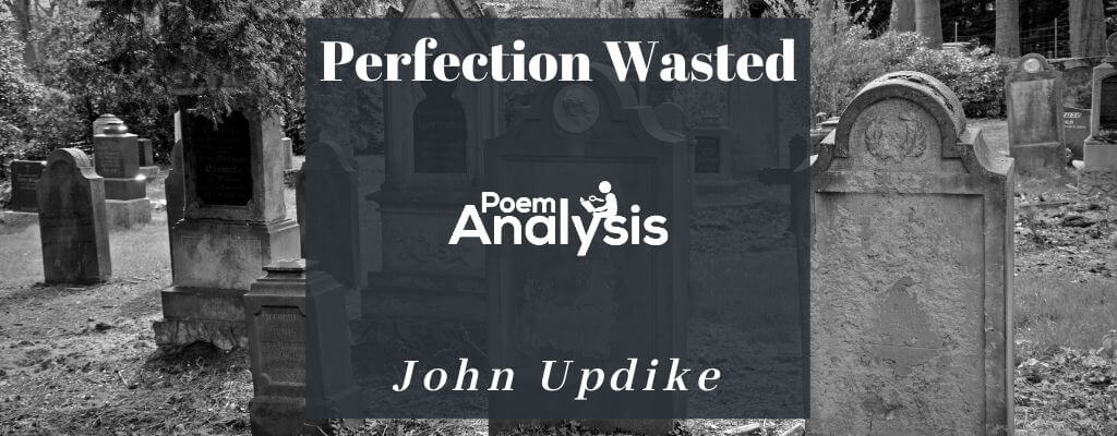 Perfection Wasted by John Updike