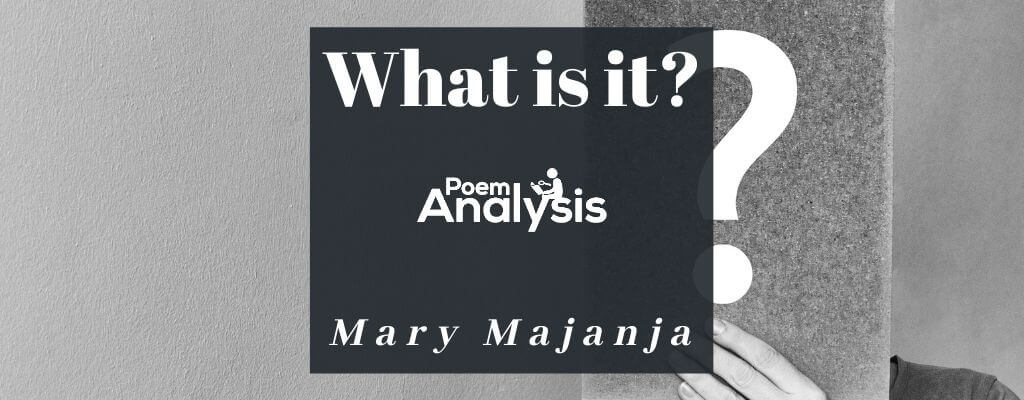 What is it? by Mary Majanja