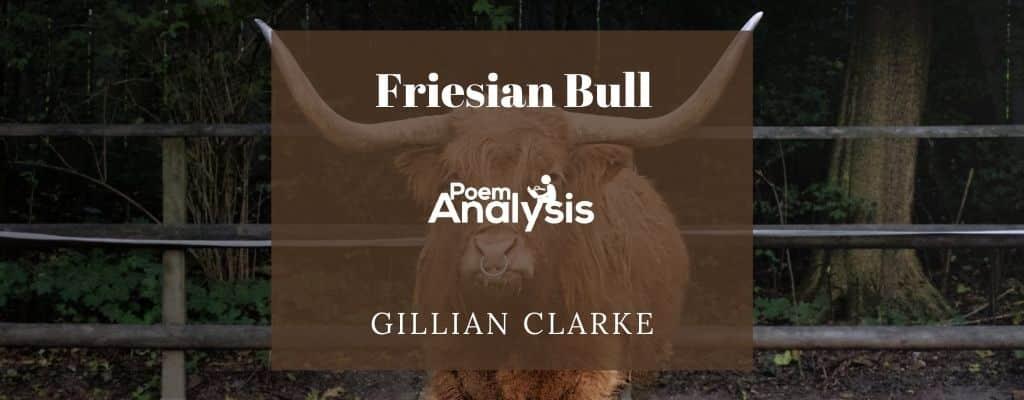 Friesian Bull by Gillian Clarke