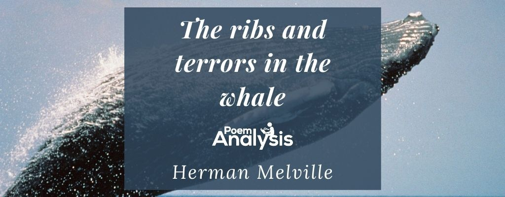 The ribs and terrors in the whale by Herman Melville