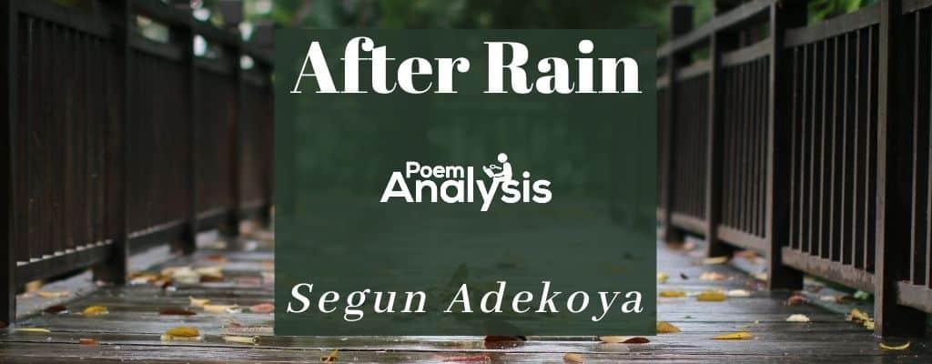 After Rain by Segun Adekoya