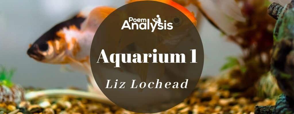 Aquarium 1 by Liz Lochead