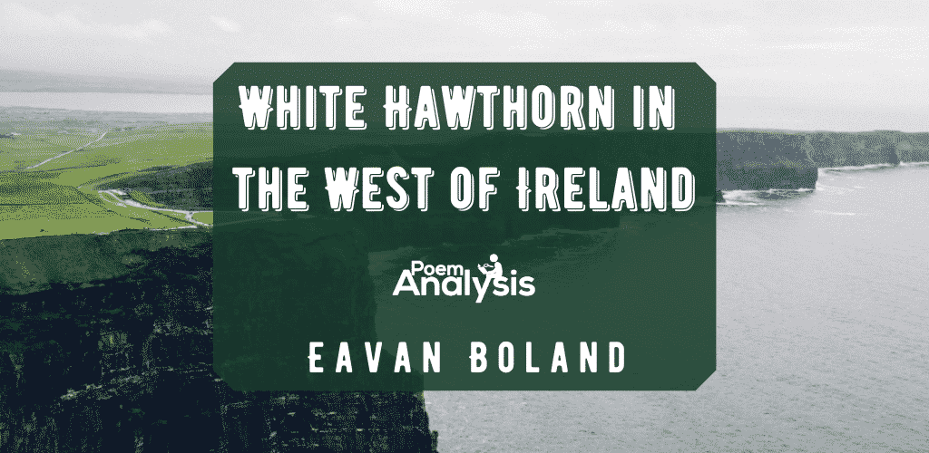 White Hawthorn in the West of Ireland by Eavan Boland