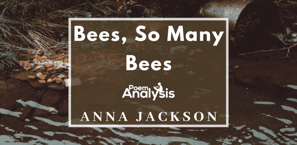 Bees, So Many Bees by Anna Jackson