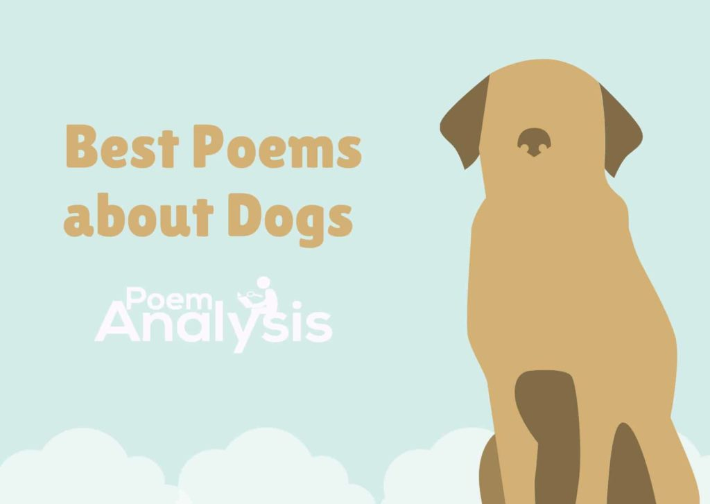 Best Poems about Dogs