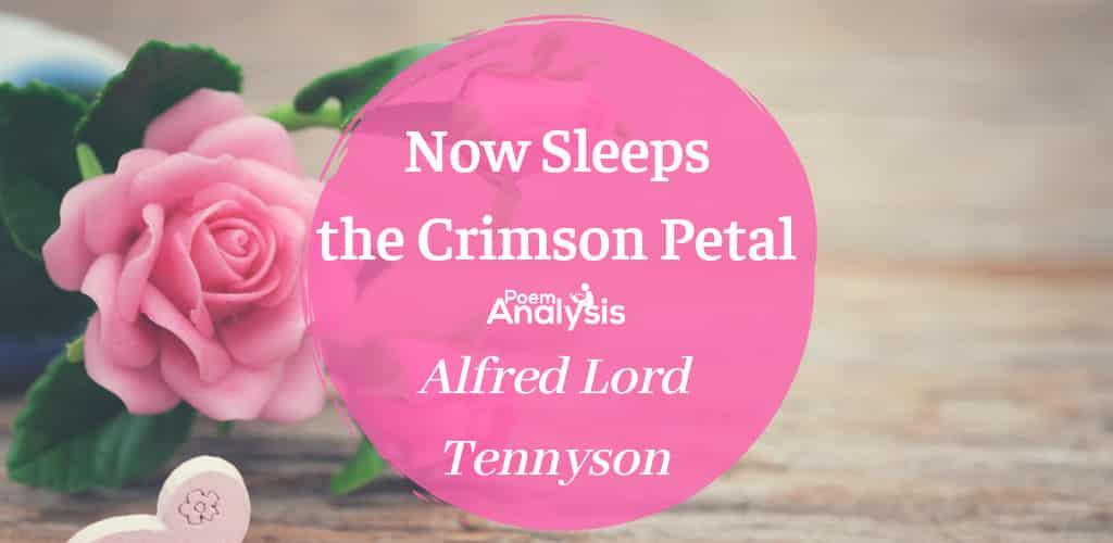 Now Sleeps the Crimson Petal by Alfred Tennyson