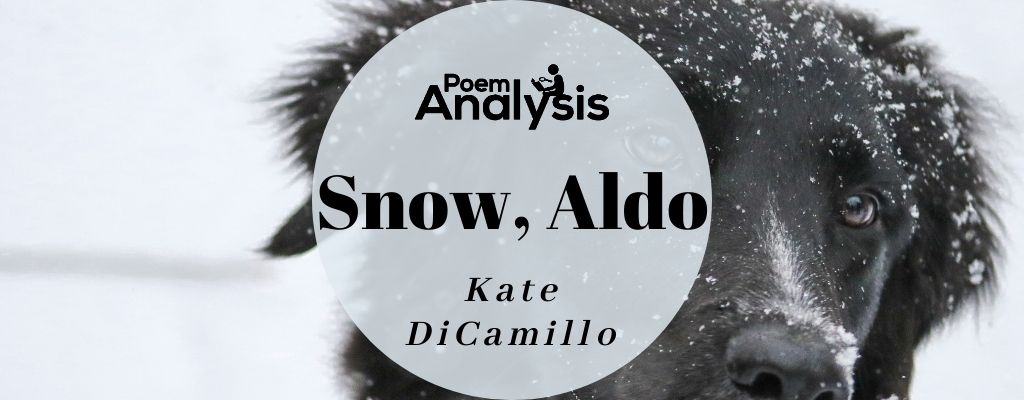 Snow, Aldo by Kate DiCamillo