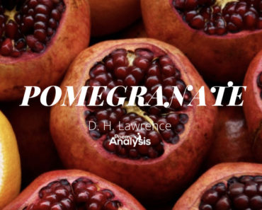 Pomegranate by D. H. Lawrence