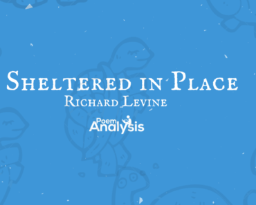 Sheltered in Place by Richard Levine