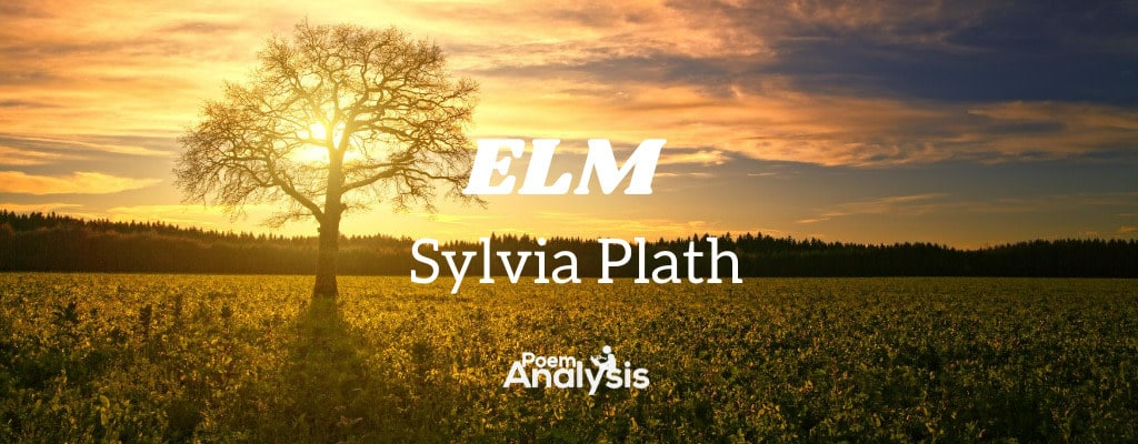 Elm by Sylvia Plath