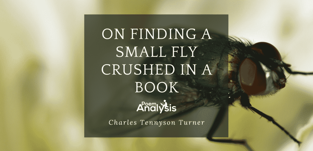 On Finding a Small Fly Crushed in a Book by Charles Tennyson Turner