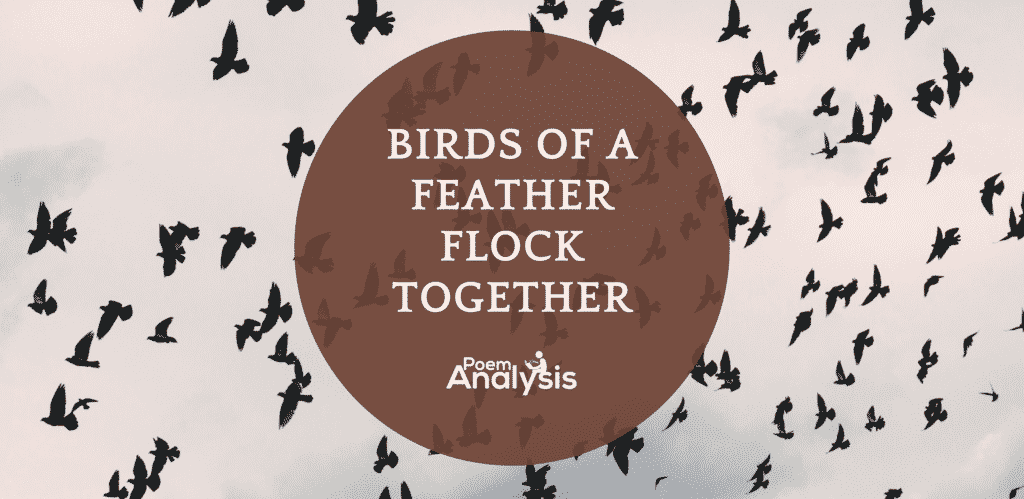 """""""Birds of a feature flock together"""" - Idiom Meaning and Origin"""