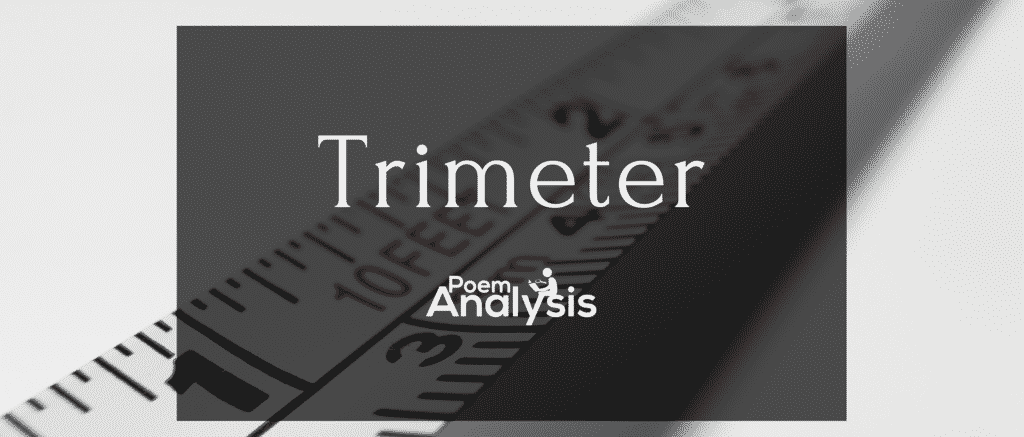 What is Trimeter? Definition, Explanation and Examples