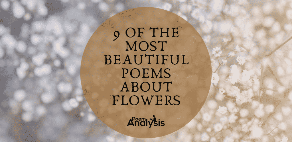 Beautiful Poems About Flowers