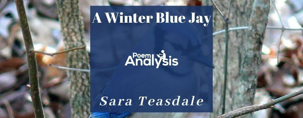 A Winter Blue Jay by Sara Teasdale
