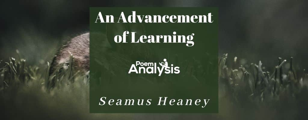 An Advancement of Learning by Seamus Heaney
