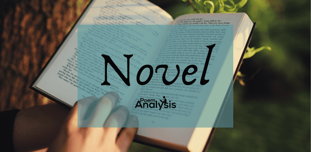 Novel definition and meaning
