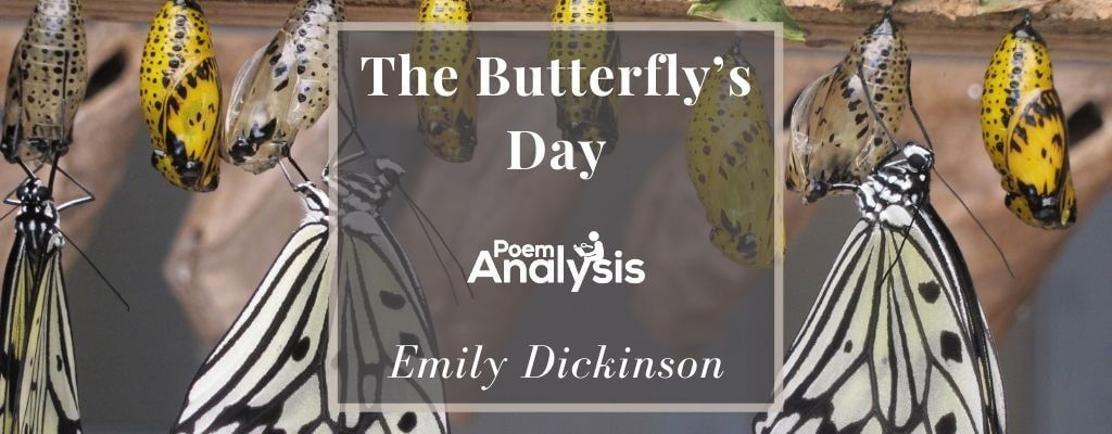 The Butterfly's Day by Emily Dickinson