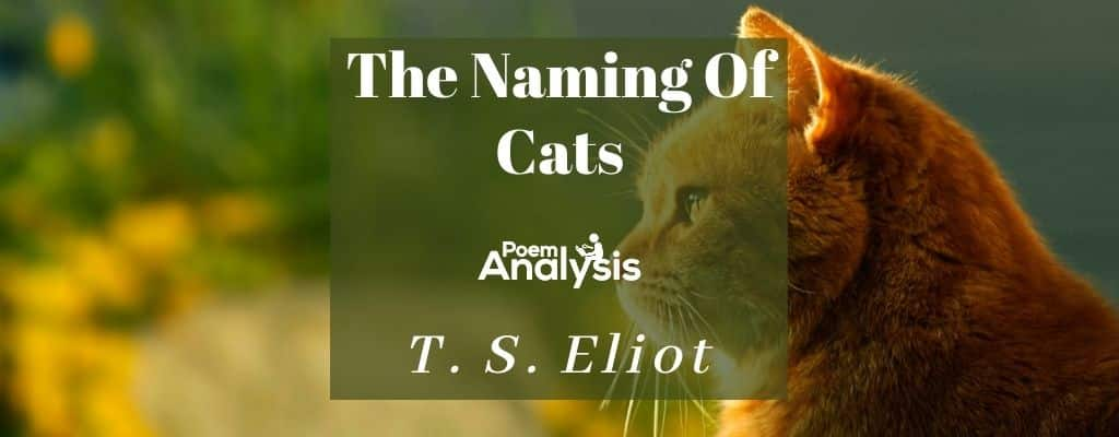 The Naming Of Cats by T. S. Eliot