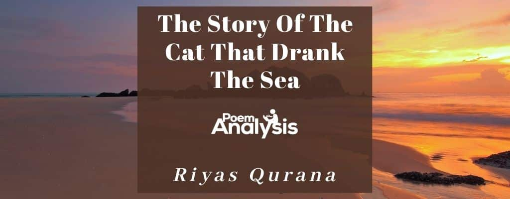 The Story Of The Cat That Drank The Sea by Riyas Qurana