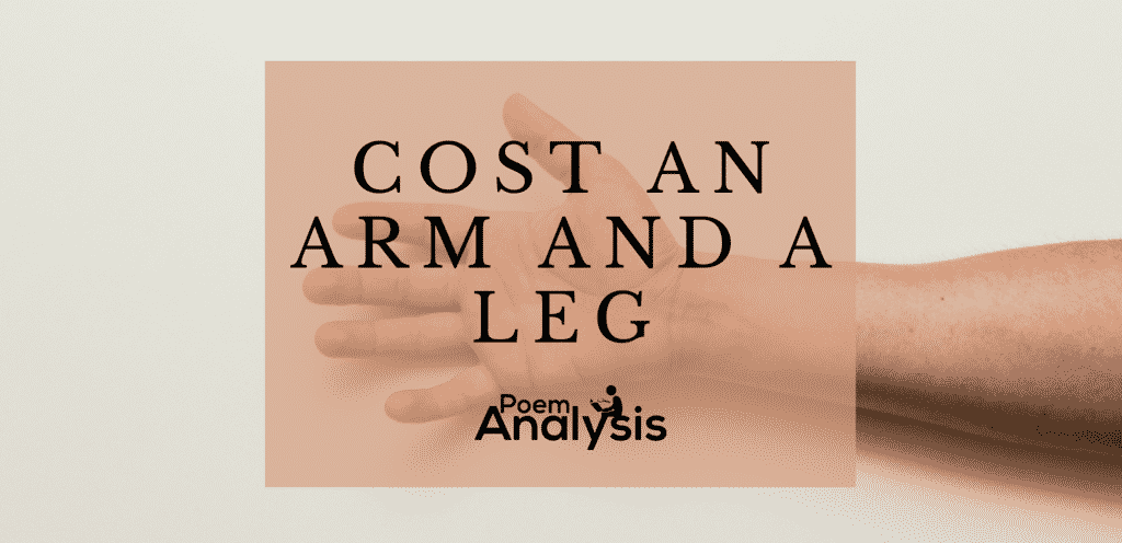 Cost an arm and a leg meaning