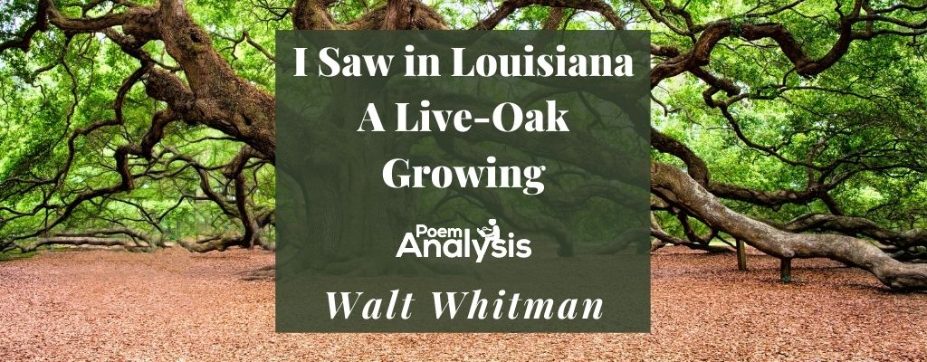 I Saw in Louisiana A Live-Oak Growing by Walt Whitman