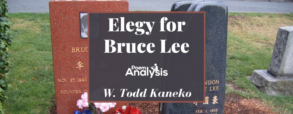 Elegy for Bruce Lee by W. Todd Kaneko