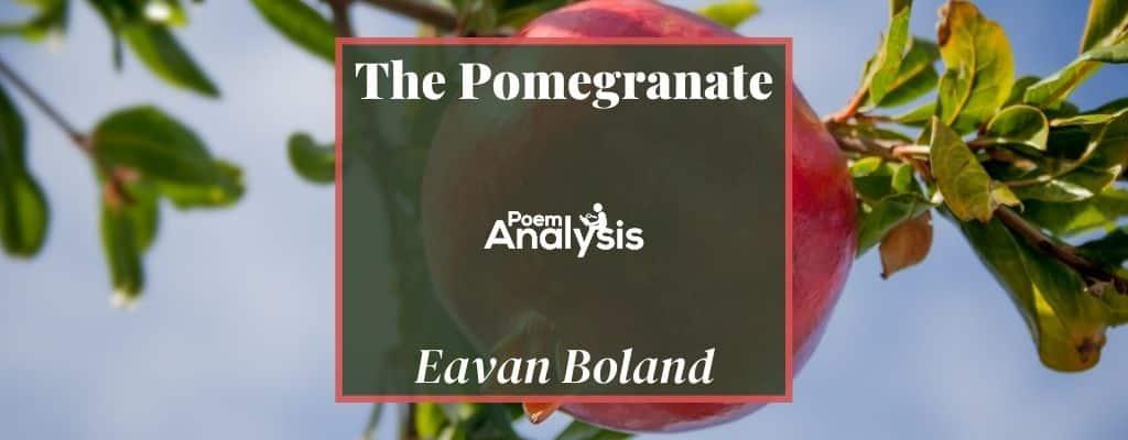The Pomegranate by Eavan Boland