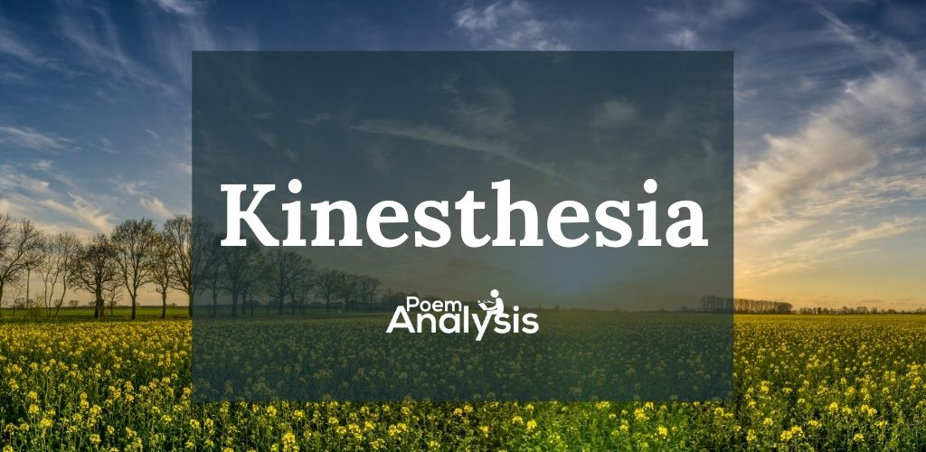 Kinesthesia definition and examples