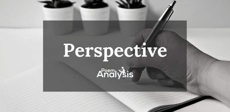 Perspective definition and examples