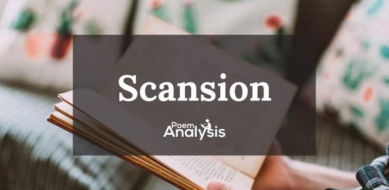 Scansion definition and examples