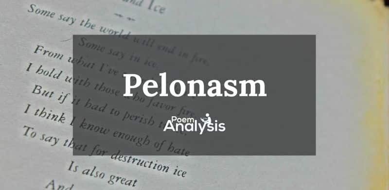 Pleonasm definition and examples