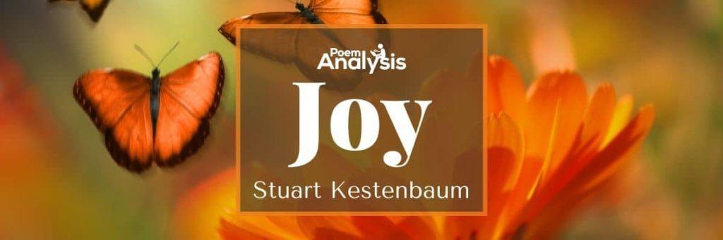 Joy by Stuart Kestenbaum