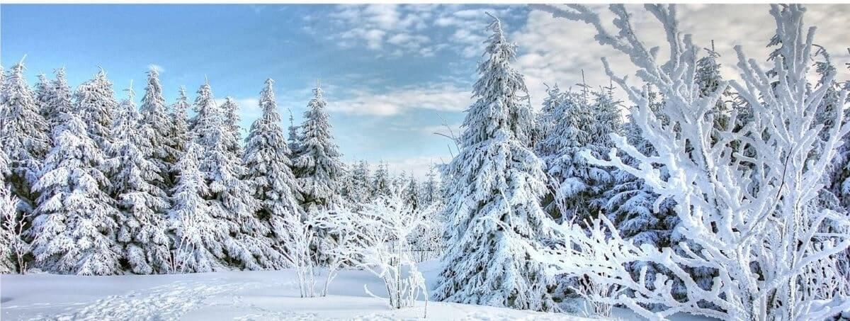 To Winter by Claude McKay Visual Representation