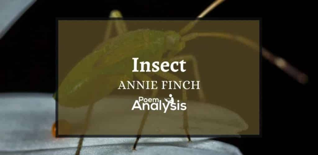 Insect by Annie Finch