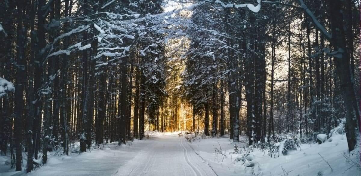 Winter-Time by Robert Louis Stevenson Visual Representation