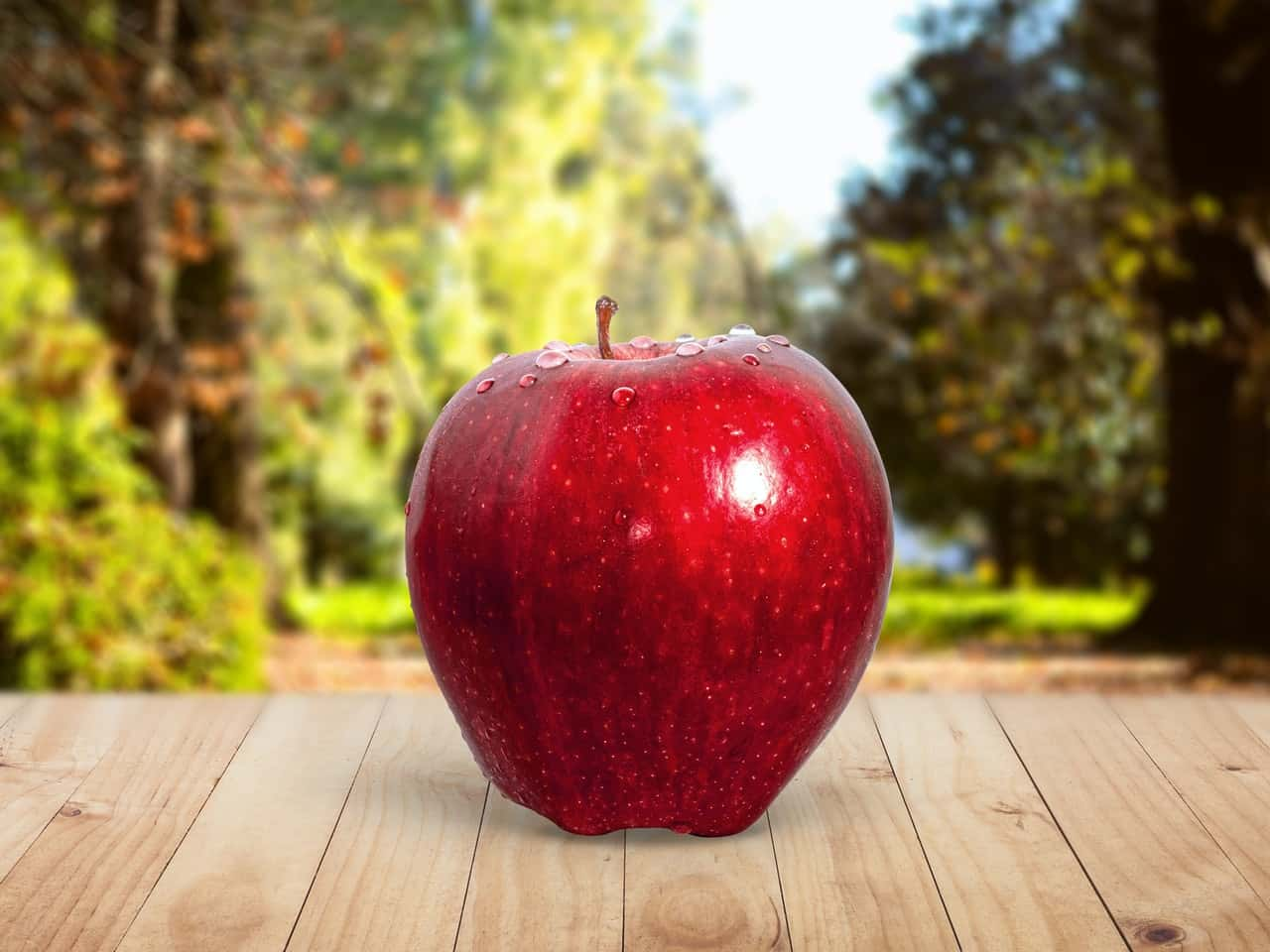 I've Got an Apple Ready by John Walsh Visual Representation
